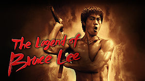 the legend of bruce lee 2008 download